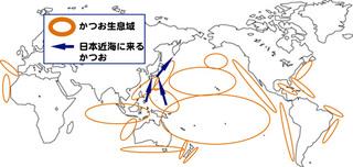 Map_bo