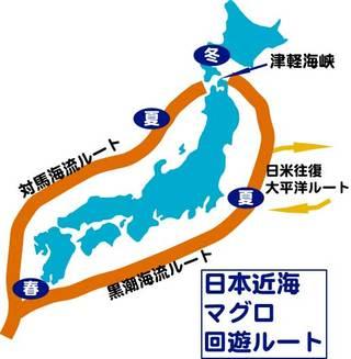 Map_bonito